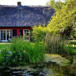 Reetgedecktes Ferienhaus mit 3 Ferienwohnungen bei Garz auf Rügen